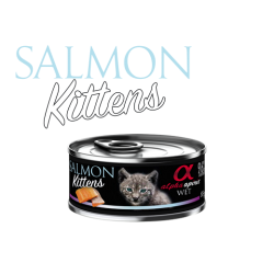 Alpha Spirit Kitten Cat Salmon